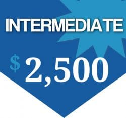 INTERMEDIATE Standard web site package with every day online marketing tools